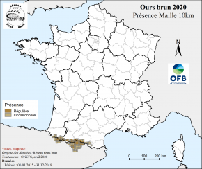 OursBrun_04_map_presence_maille2019_OFB-ROB
